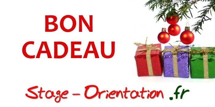 """Offrez Un Bon Cadeau """"stage Orientation"""" à Vos Proches"""