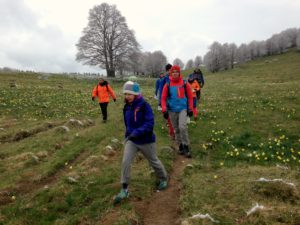 Stage Orientation AMM Dans Le Jura - Plateau Du Retord